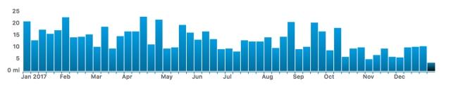 2017-running-graph